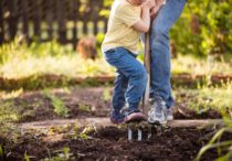 5 Home Projects for You and Your Household Helpers